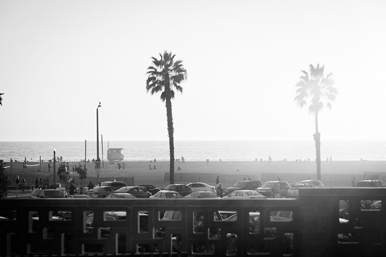 Santa Monica Beach -  Los Angeles, November 13, 2016.